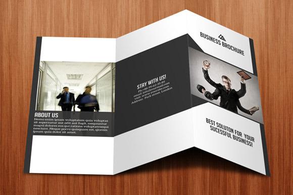 Tri- Fold Business Brochure