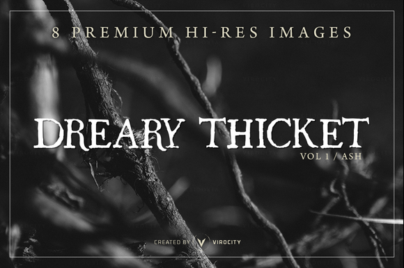 Dreary Thicket V1