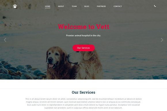Vett Animal Hospital Template
