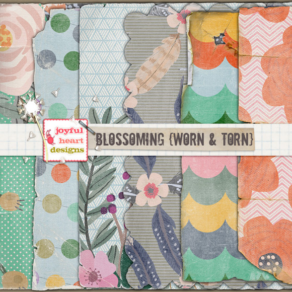 Blossoming {worn Torn} 20% Off