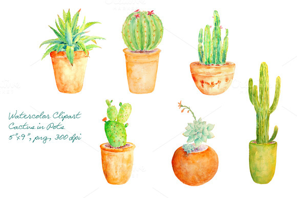 Watercolor Clipart Cactus In Pot