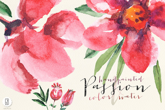 Aquarelle Watercolor Poppy Red