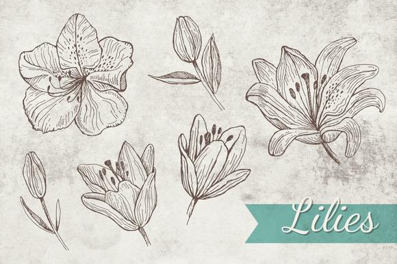 Doodle Lilies Bonus Pattern