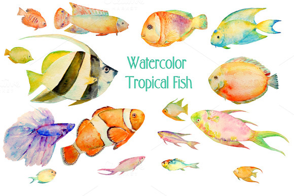 Watercolor Clipart Tropical Fish