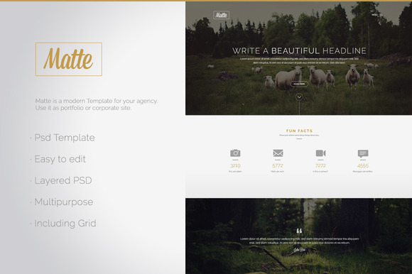 Matte PSD Website Template