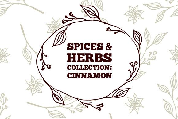 Spices Herbs Cinnamon