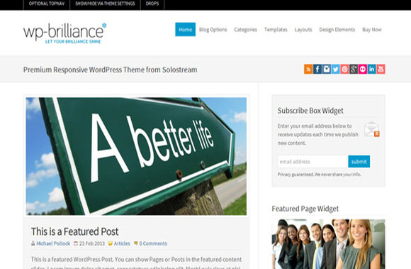 WP-Brilliance Premium WP Theme