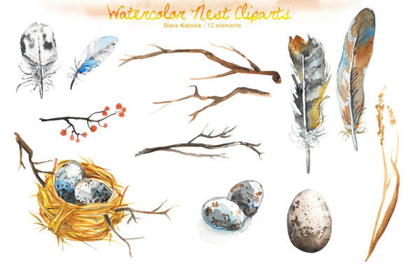 Watercolor Bird Nest Clipart