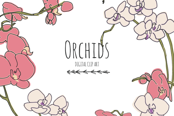 Orchids Digital Clip Art
