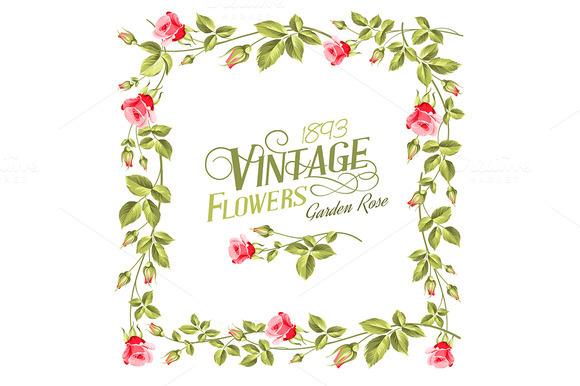 Vintage Flower Frame Over White