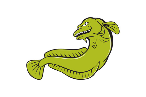 Burbot Fish Angry Cartoon
