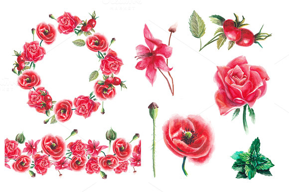 Watercolor Red Flowers Collection