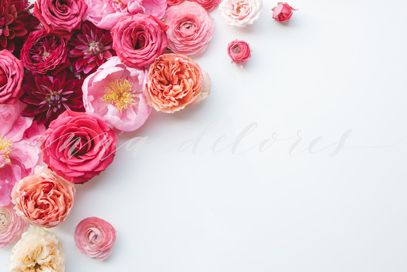 Styled Stock Photo Pink Flowers 5