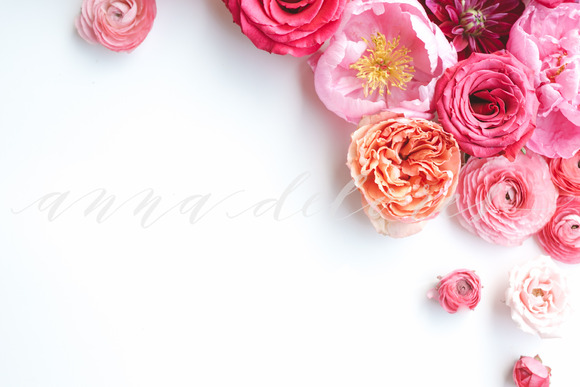Styled Stock Photo Pink Flowers 6