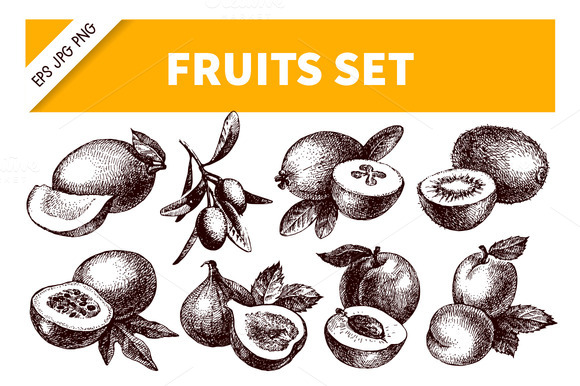 Hand Drawn Sketch Fruits Set