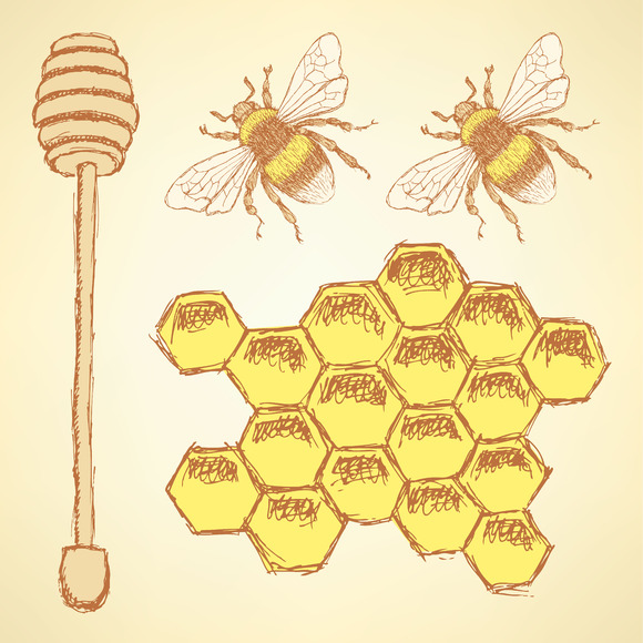 Sketch Honey Cells Stick And Bee