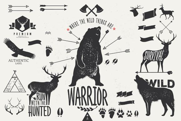 Hand Drawn Wild Animal Pack