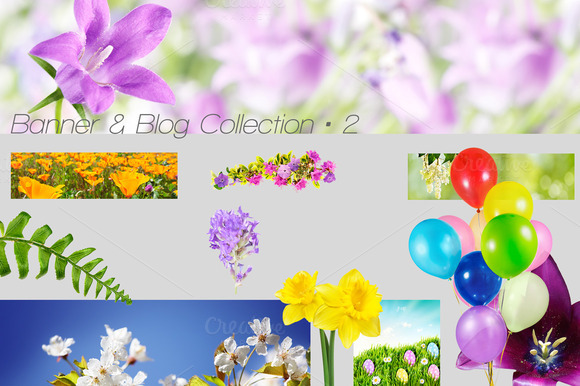 Banner Blog 2 Spring In The Air