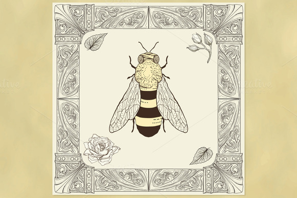 Honey Bee And Ornate Frame