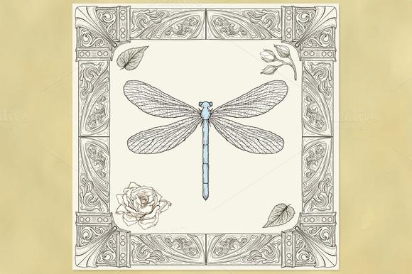 Dragonfly Ornate Frame
