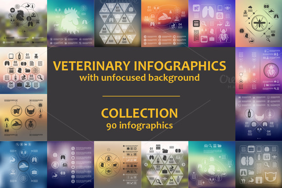 90 VET INFOGRAPHICS Collection