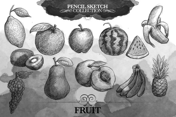 Sketch Collection Fruit