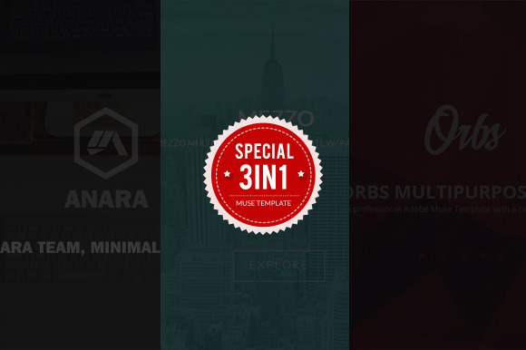 3 In 1 Adobe Muse Template