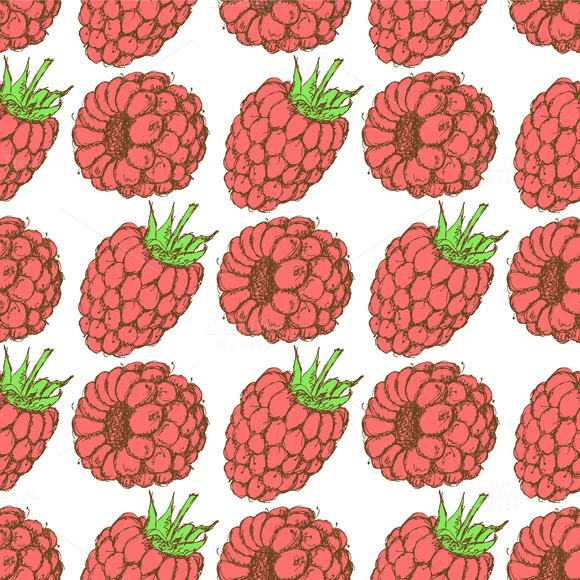 Sketch Tasty Raspberry