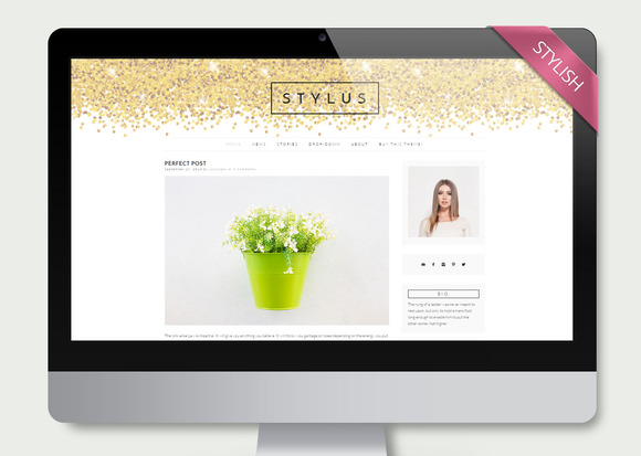 Stylus Clean Wordpress Theme Blog