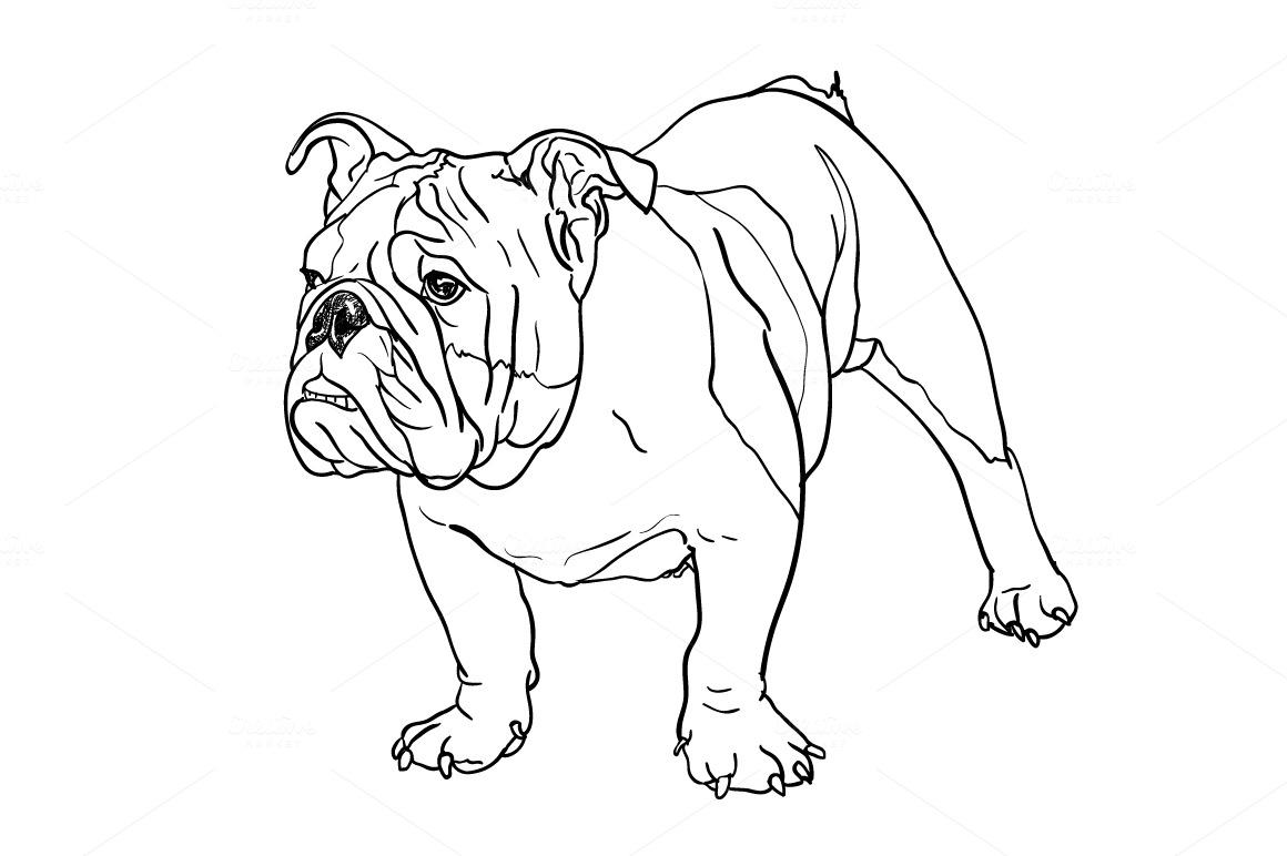 Mascot  Wikipedia