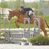Gallery 2018 - HITS Chicago - Showplace Spring Classic II