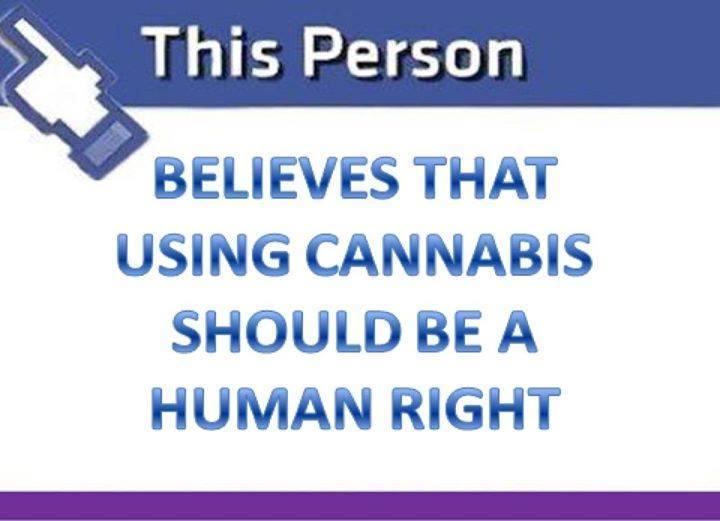 medical marijuana recommendations valley village