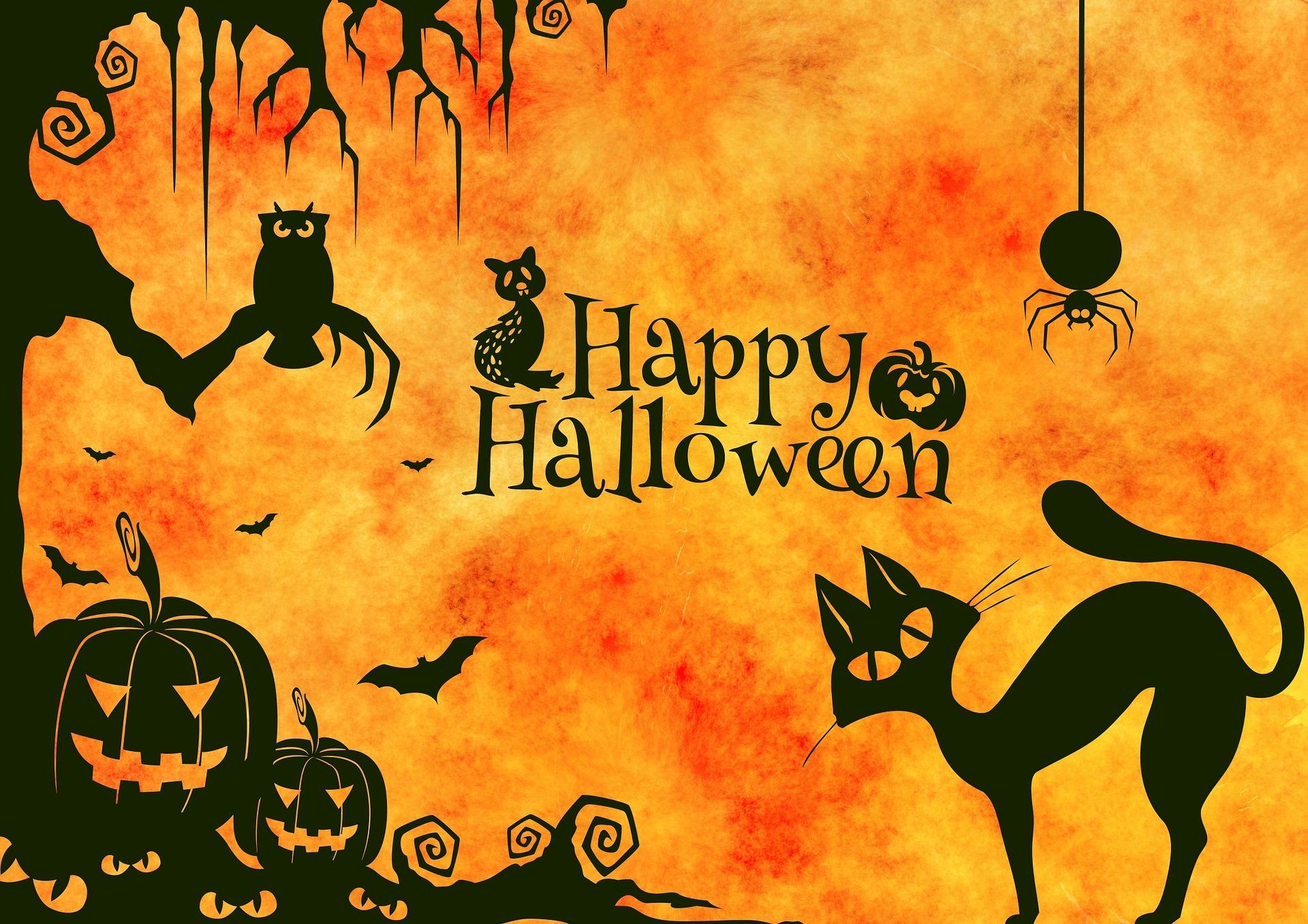 halloween-959006_1920.jpg