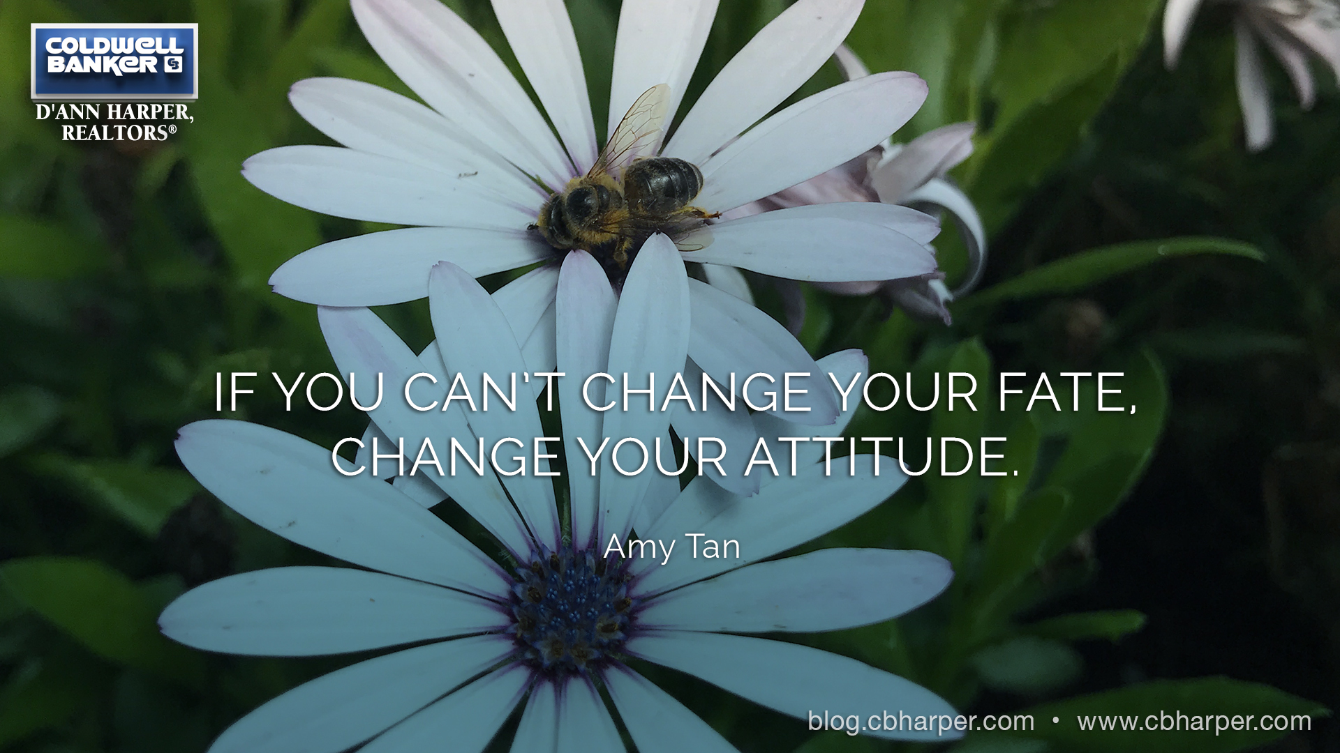 If You Cannot Change Your Fate, Change Your Attitude.