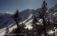 Mount San Gorgonio CA 1972-06