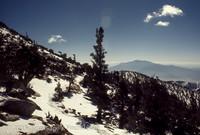 Mount San Gorgonio CA 1972-07