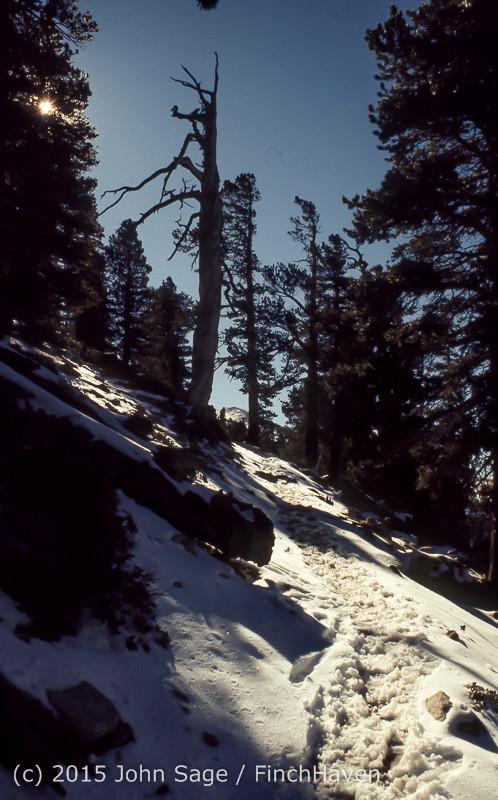 Mount San Gorgonio CA 1972-09