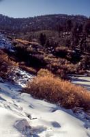 Mount San Gorgonio CA 1972-10