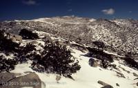 Mount San Gorgonio CA 1972-16