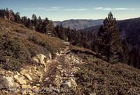 Mount San Gorgonio CA 1972-26