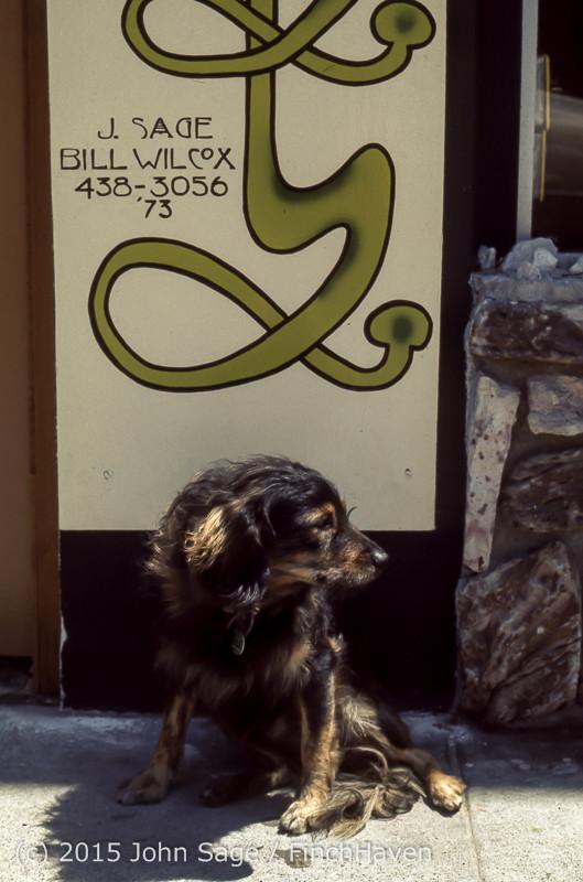 Wild Oats Huntington Beach CA 1973-13