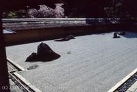 Japan Trip April 1984 b08 268