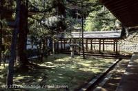 Japan Trip April 1984 b08 271