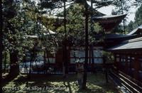Japan Trip April 1984 b08 273