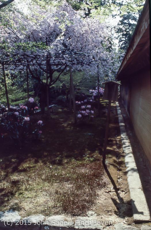 Japan Trip April 1984 b09 278