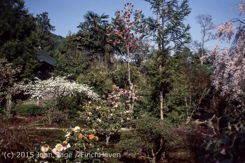Japan Trip April 1984 b09 284