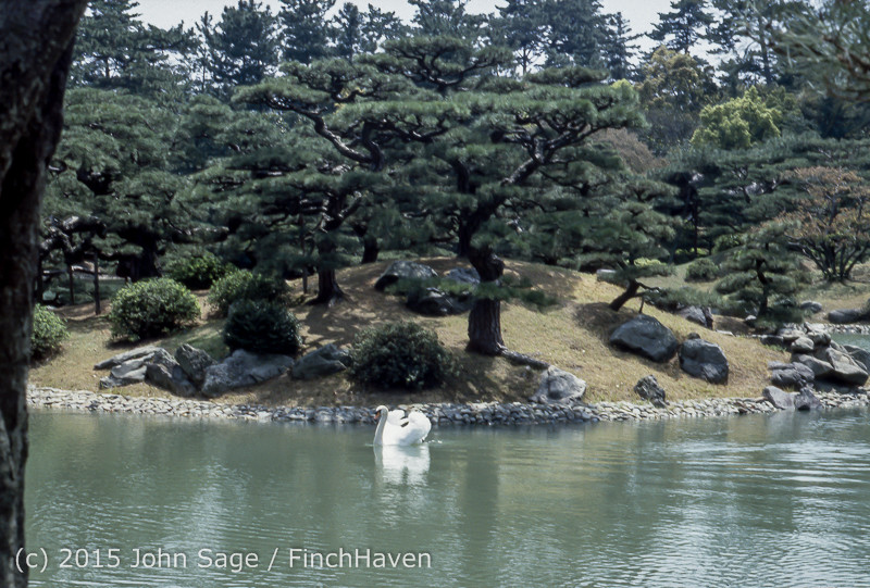 Japan Trip April 1984 b11 355