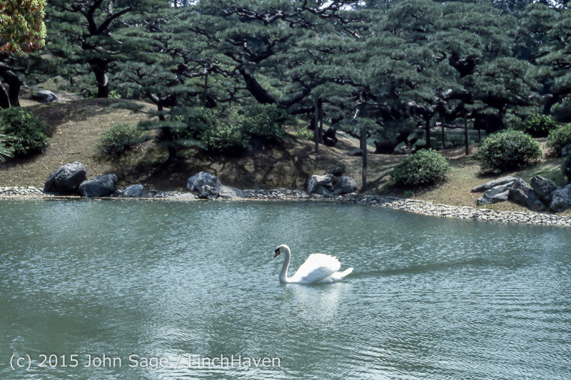 Japan Trip April 1984 b11 356