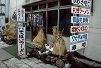 Japan Trip April 1984 b2 039
