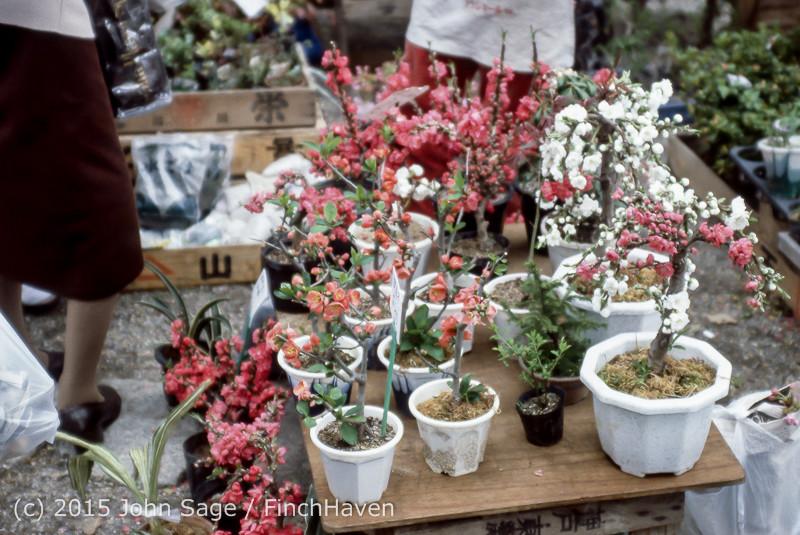Japan_Trip_April_1984_b6_179